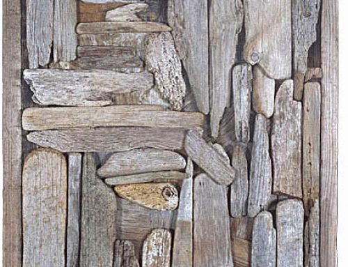 Driftwood Assemblage # 07