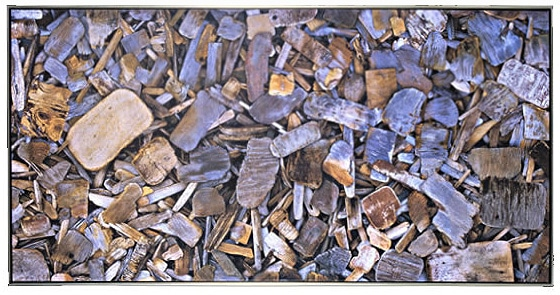 """Driftwood 2"" Digital Print on Canvas"