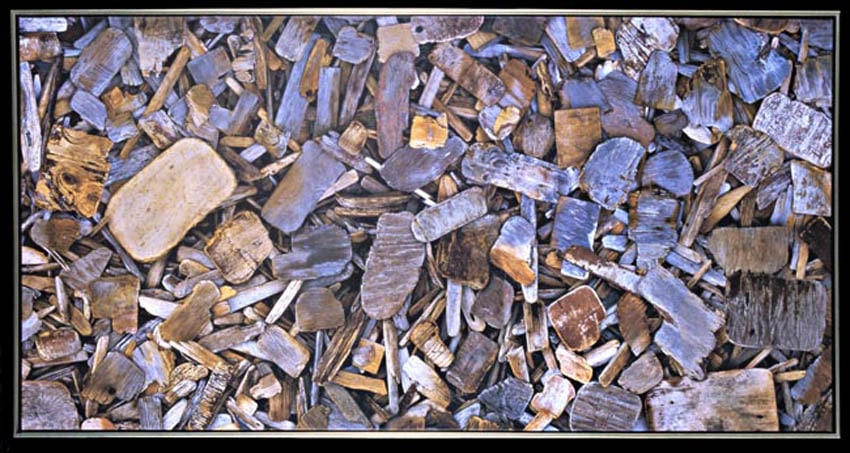Driftwood 2 (Digital Print on Canvas)