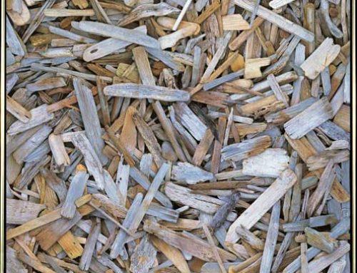 Driftwood Print 1