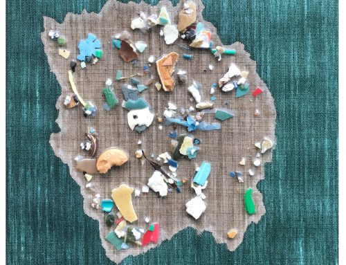Pacific Garbage Patch Study #11