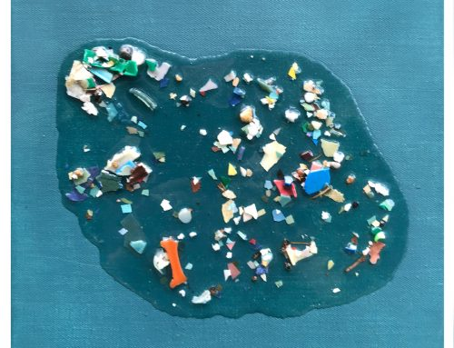 Pacific Garbage Patch Study #14