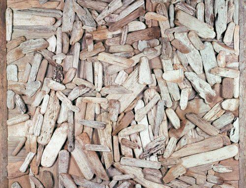 Driftscape 2 – Driftwood Assemblage