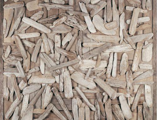 Driftscape 1 – Driftwood Assemblage